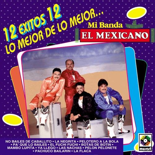 Play & Download 12 Exitos Lo Mejor De Mi Banda El Mexicano by Mi Banda El Mexicano | Napster