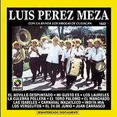 Play & Download Yuis Perez Meza by Luis Perez Meza | Napster