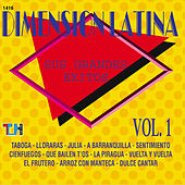 Sus Gdes Exitos Vol.1 Dimension Latina by Dimension Latina
