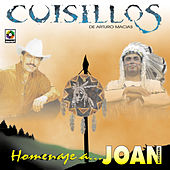 Play & Download Homenaje A Joan Sebastian by Banda Cuisillos | Napster