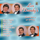 Play & Download Dime Que Si Me Quieres by Los Dandys | Napster