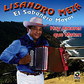 Play & Download El Sabanero Mayor Hay Amor by Lisandro Meza | Napster