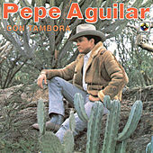 Play & Download Pepe AguilarCon Tambora by Pepe Aguilar | Napster