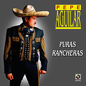 Play & Download Puras Rancheras - Pepe Aguilar by Pepe Aguilar | Napster