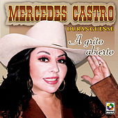 Play & Download A Grito Abierto by Mercedes Castro | Napster