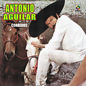 Play & Download Corridos by Antonio Aguilar | Napster