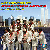 Las Estrellas De Dimension Latina En New York by Dimension Latina