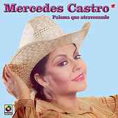 Play & Download Paloma Que Atravesando by Mercedes Castro | Napster