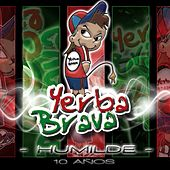 Play & Download Humilde 10 Años by Yerba Brava | Napster