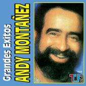 Play & Download Grandes Exitos de Andy Montañez by Andy Montañez | Napster