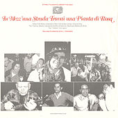 In Mezz'una Strada Trovai una Pianta di Rosa: Italian Folk Music Collected in New York and New Jersey, Vol. 1 by Various Artists