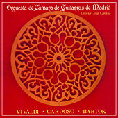 Vivaldi, Cardoso, Bartok by Various Artists