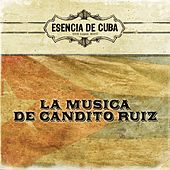 Play & Download La Musica de Candito Ruiz by Various Artists | Napster