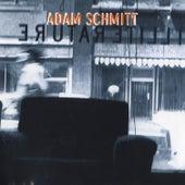 Illiterature by Adam Schmitt