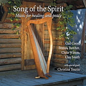 Play & Download Song of the Spirit by Various Artists | Napster