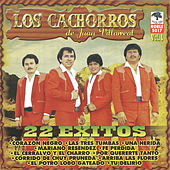 Play & Download 22 Exitos de los Cachorros de Juan Villarreal by Los Cachorros de Juan Villarreal | Napster