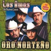 Oro Norteno by Los Amos De Nuevo Leon