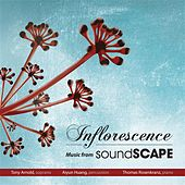 Inflorescence – Music from Soundscape by Various Artists