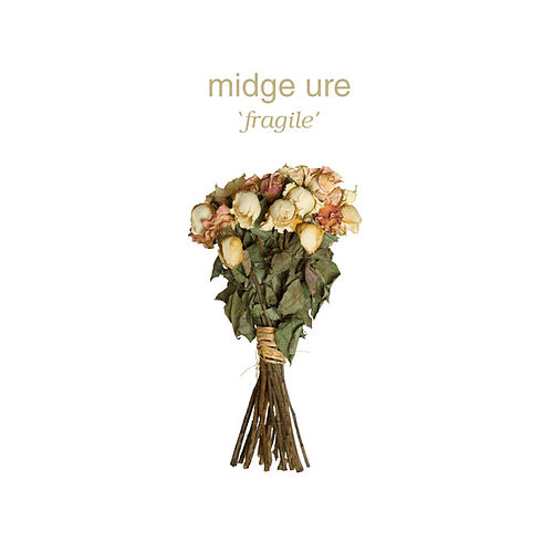 Play & Download Fragile by Midge Ure | Napster