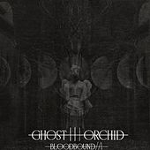 Play & Download Bloodbound / / 1 by The Ghost Orchid | Napster
