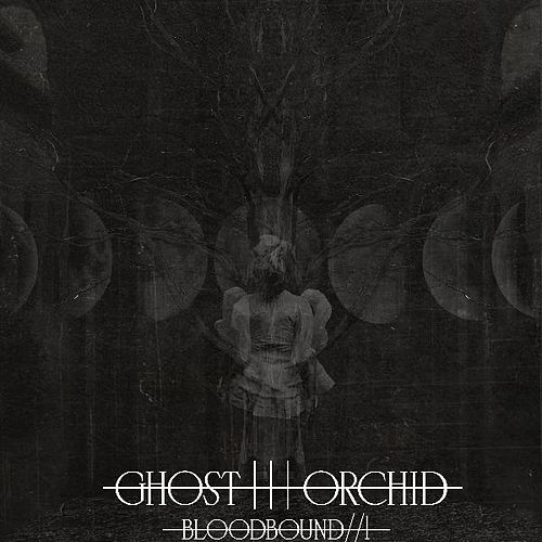Bloodbound / / 1 by The Ghost Orchid
