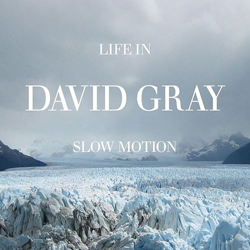 Life in Slow Motion by David Gray