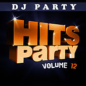Hits Party Vol. 12 by DJ Party
