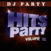 Hits Party Vol. 15 by DJ Party