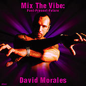 Play & Download Mix The Vibe Series: David Morales Selection by Various Artists | Napster