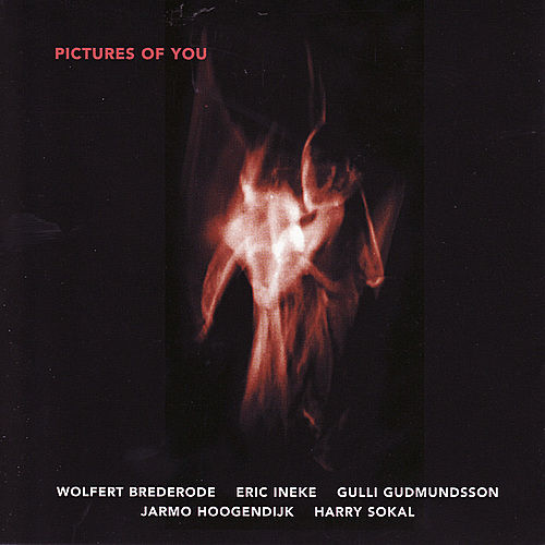 Play & Download Pictures Of You by Wolfert Brederode | Napster