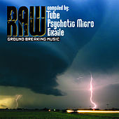 Raw Compiled By Tube, Psychotic Micro & Tube von Various Artists