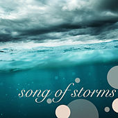 Play & Download Song of Storms - Nature Music & Soothing Sounds of Thunderstorm, Falling Rain and Flowing Water Relax With Nature Rainforest Lullabies by Rainforest Music Lullabies Ensemble | Napster