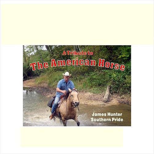 A Tribute to The American Horse by James Hunter