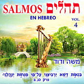 Tehilim Salmos en Hebreo, Vol. 4 by David & The High Spirit