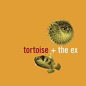 Play & Download In The Fishtank 5 by Tortoise | Napster