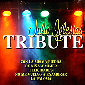 Julio Iglesias Tribute by Various Artists