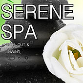 Play & Download Serene Spa by Chakra's Dream | Napster