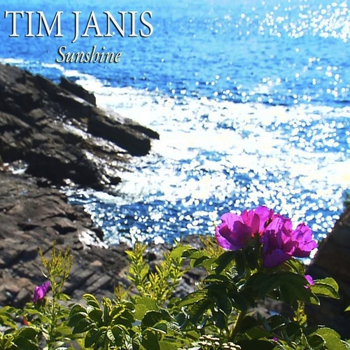 Sunshine by Tim Janis