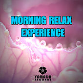 Play & Download Morning Relax Experience by Various Artists | Napster