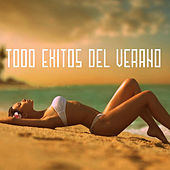 Play & Download Todo Éxitos del Verano by Various Artists | Napster