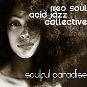 Soulful Paradise - EP by Neo Soul Acid Jazz Collective