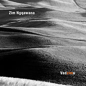 Play & Download Vadzimu by Zim Ngqawana | Napster