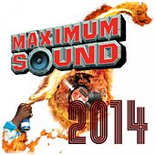 Maximum Sound 2014 von Various Artists