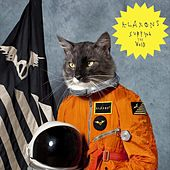 Surfing the Void by Klaxons