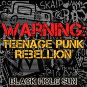 Play & Download Warning: Teenage Punk Rebellion by Black Hole Sun | Napster