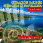 Play & Download Curación Balinés Sonidos de la Naturaleza by Andreas | Napster