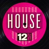 12 Inch Dance: House von Various Artists