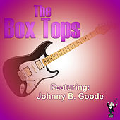 Play & Download Johnny B. Goode (Live) by The Box Tops | Napster