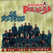 Play & Download 15 Exitos by Banda Pelillos | Napster