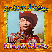 Play & Download El Rey de Colombia by Aniceto Molina | Napster
